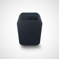 Bluesound PULSE FLEX 2i Wireless Streaming Speaker