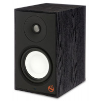 Paradigm Powered Speaker A2